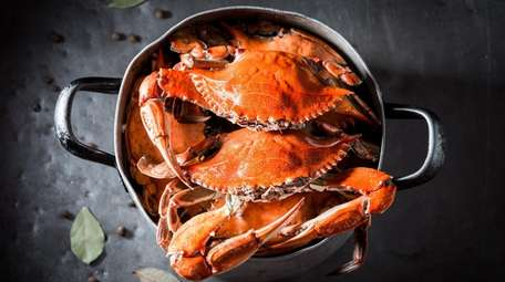 Celebrate Maryland's Preakness with a crab dish this