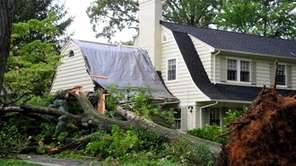 A tree fell on a Garden City house