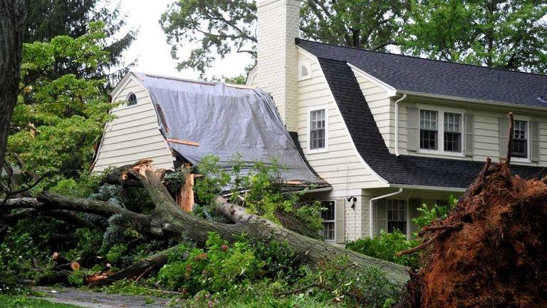 A tree fell on a Garden City house