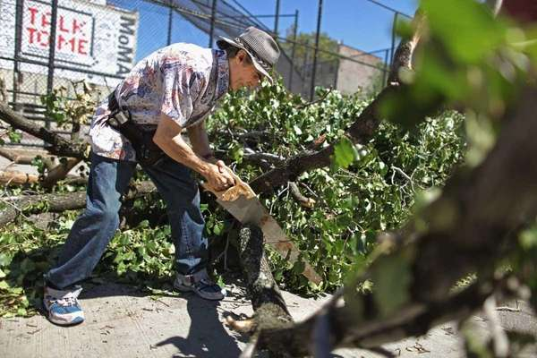 Photo credit: Getty Images | Anthony Cali uses a hand saw to cut up a tree ...