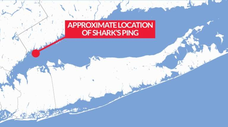 Approximate location of shark's ping on Long Island