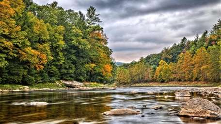 The Clarion River runs through Cook Forest State