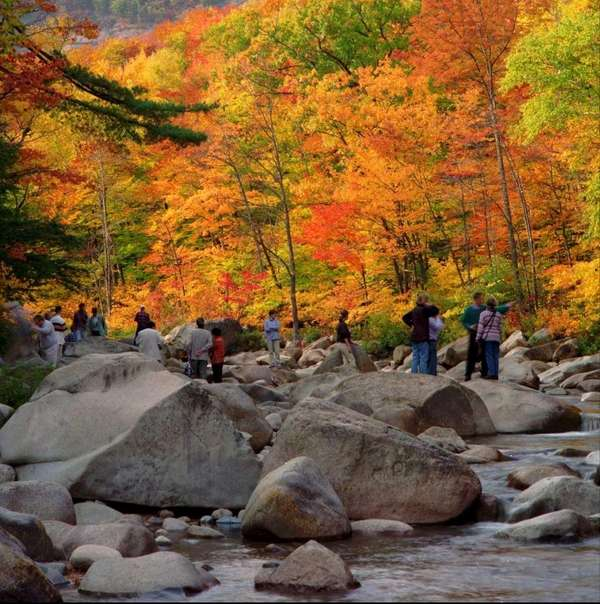 Leaf-peepers take in nature's spectacular colors on the