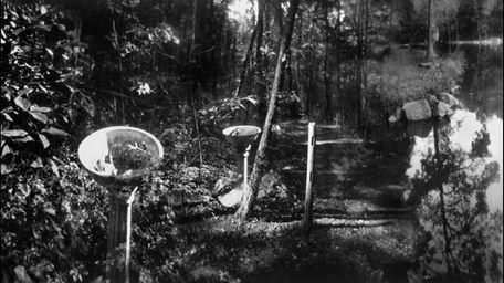 The Birdbath by Joan Powers. Black and white