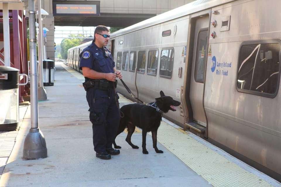 MTA police K-9 keep a watchful eye on