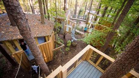 The Treehouse Village at Durham's Museum of Life