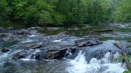 Eno River State Park in Durham offers a