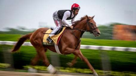 Exercise rider Tammy Fox works Everfast on Wednesday