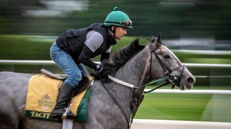 Exercise rider Joe Ramos trains Tacitus on Wednesday