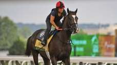 Exercise rider Tammy Fox rides Everfast on the
