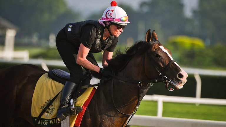 War of Will runs the track at Belmont