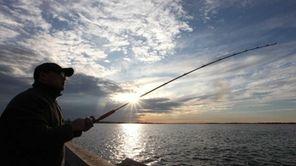 Neil Vicerra of Hicksville fishing for blackfish at