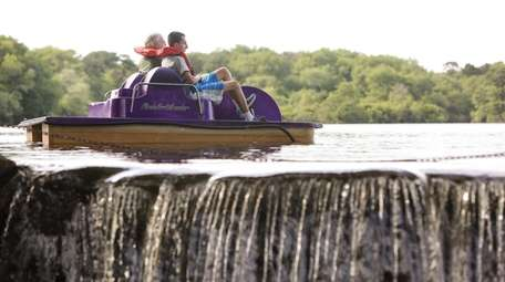 Taking a pedal boats out on Belmont Lake