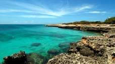 Crystal clear water meets Aruba's shore in this