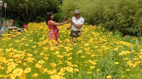 Sonia Arora and Raju Rajan decided to trade