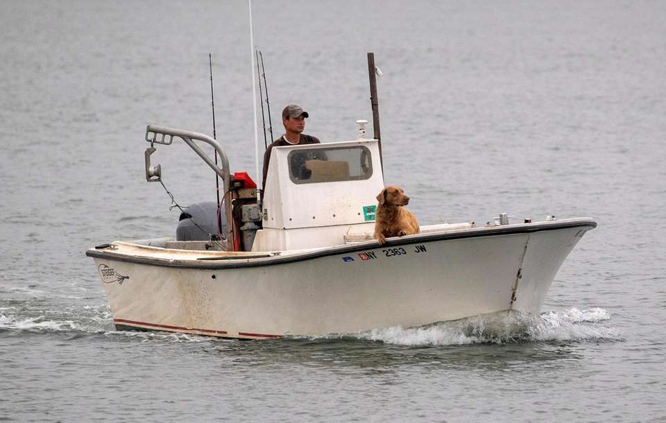 Tyler Clark and his dog Rye fish on