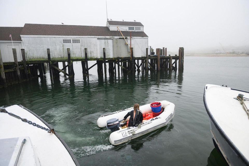 Anthony Sosinski from Montauk leaves commercial dock to