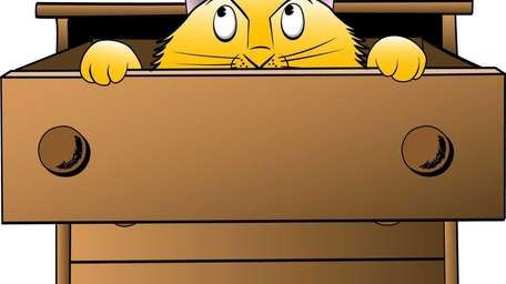 Drawer, Domestic Cat, Dresser, Cartoon, Curiosity, Kitten, Peeking,