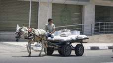 A Palestinian rides a donkey-pulled cart carrying sacks