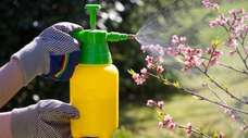 Gardeners who use pesticides and herbicides should take