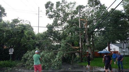 Broken tree branches on Montauk Drive in Bay