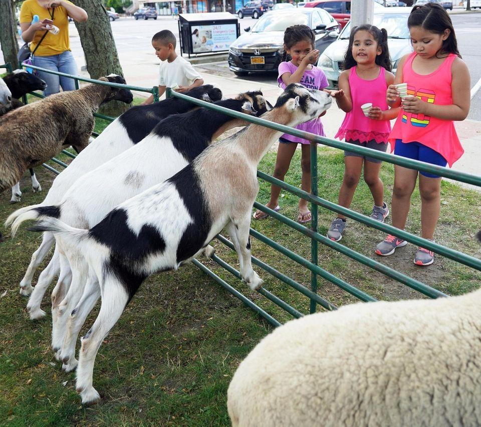L-R: Elias Sanchez , 5, Juliana Hiraldo ,5,