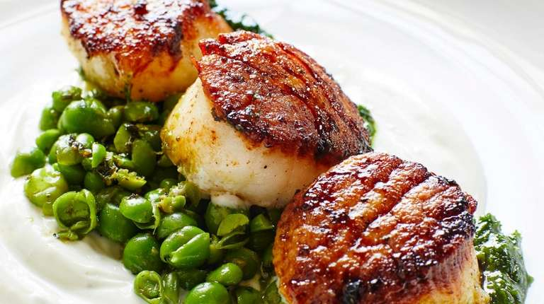 Scallops are on the menu at The Merchant's