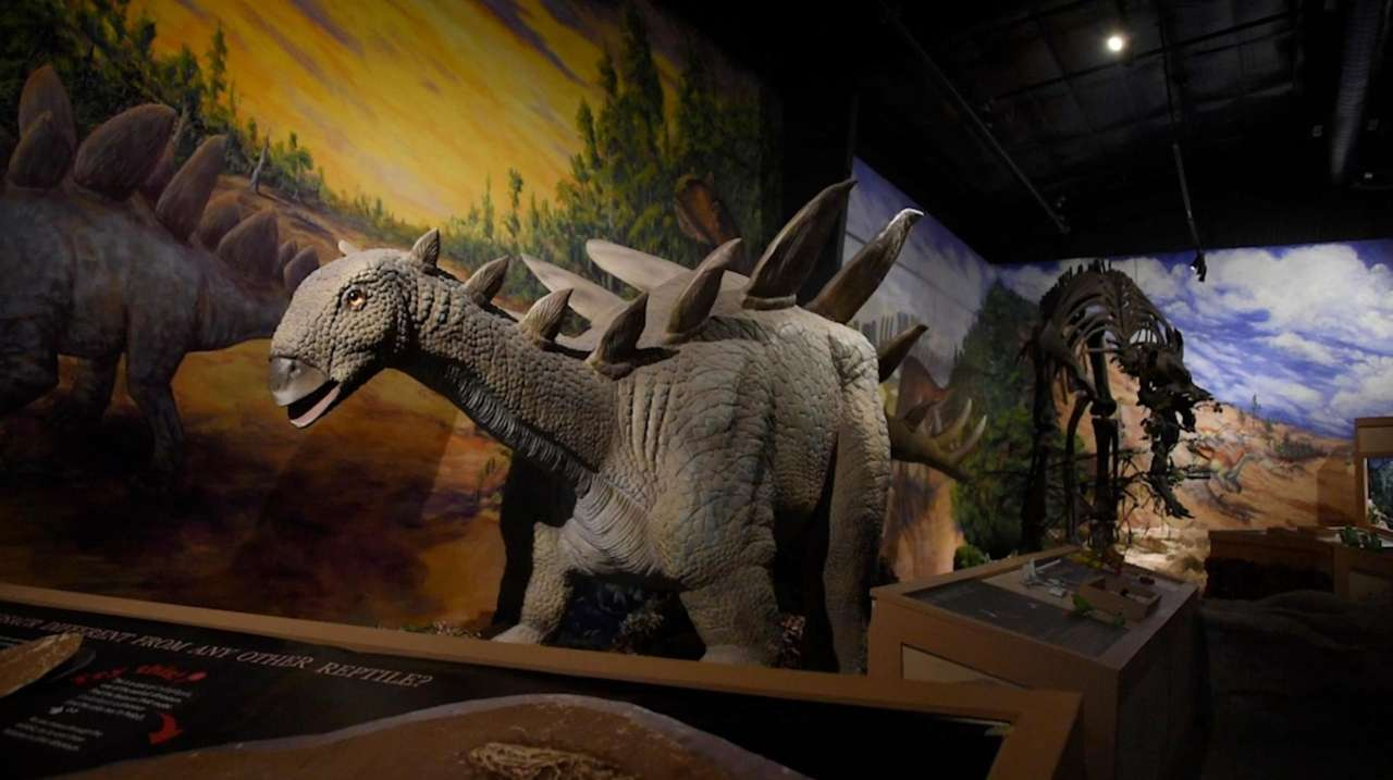 "The ""Dinosaurs!"" exhibit at the Center for Science"