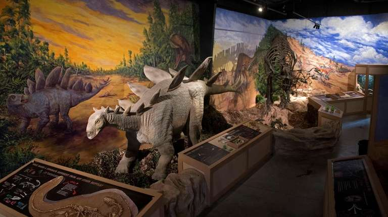 "The displays at the new ""Dinosaurs!"" exhibit at"