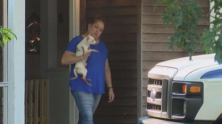 Couple had 30 cats and dogs in home, house condemned, SPCA