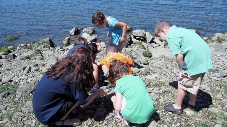 Whaling Museum and Education Center in Cold Spring Harbor giving out camp scholarships
