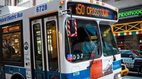 M50 Bus