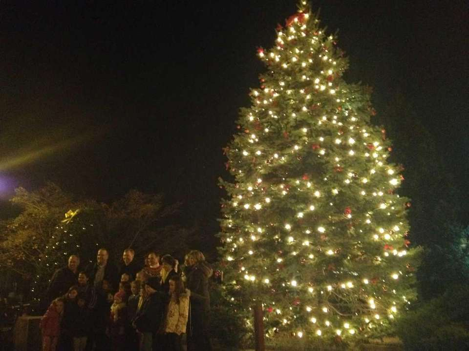 Hundreds watch the annual Christmas tree lighting in