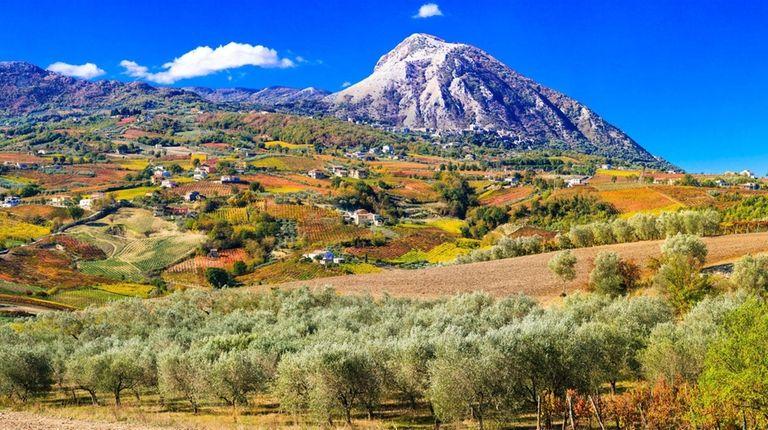 The colorful autumn landscape paints a panoramic picture