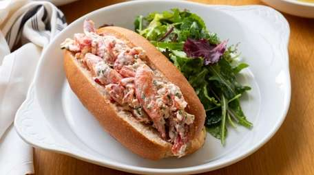 A creamy lobster roll on a toasted bun