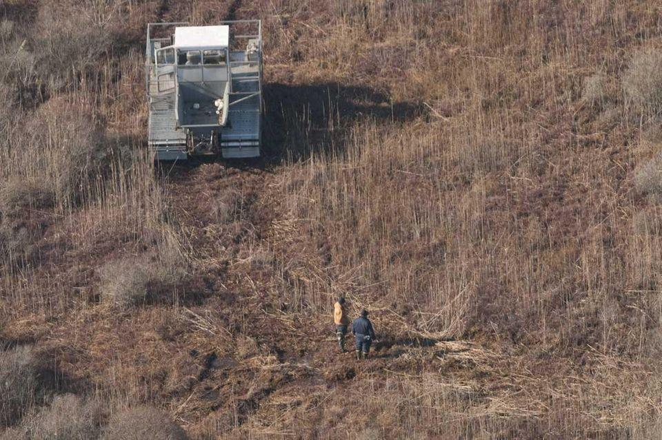 Investigators search the area where they found skeletal