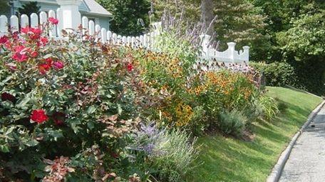 The perennial border in front of garden columnist