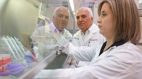 Dr. Saleh Naser and Dr. Latifa Abdelli work