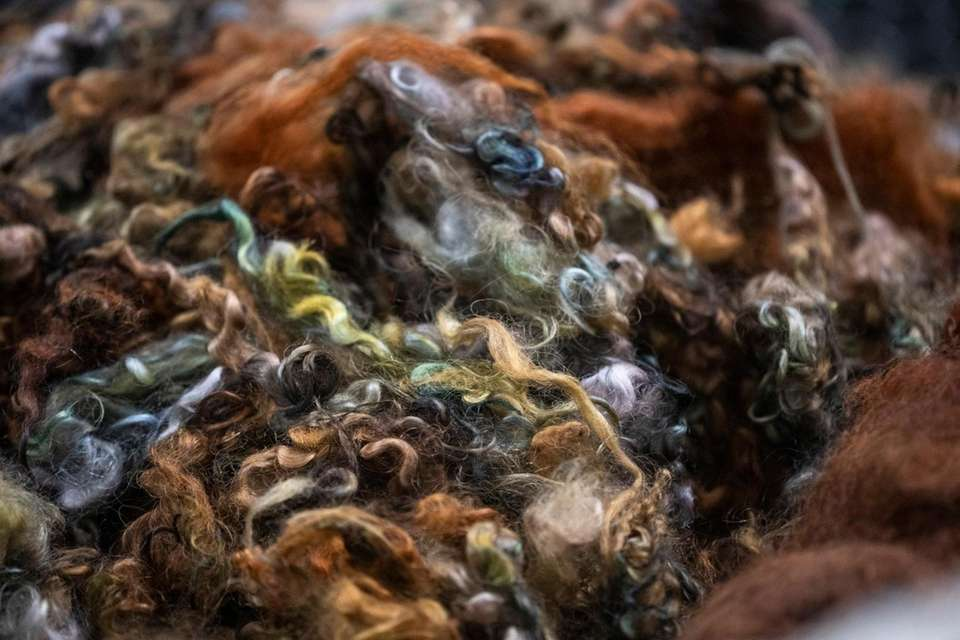 Dyed wool awaits cleaning and carding machine at