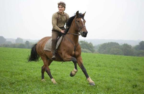 Albert Narracott (Jeremy Irvine) joyfully rides atop his