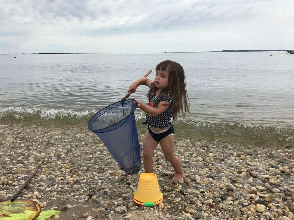 My granddaughter Isabella trying to catch little fish