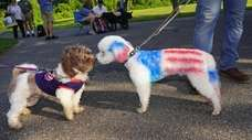 Angus, right, with the United States flag painted
