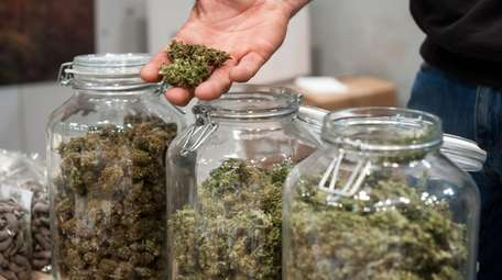 Glass jar full of Cannabis Sativa for sale