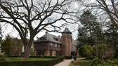 An American Elm tree dominates the courtyard in