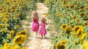 Chloe Robert-Demolaize, 6, from Mattituck and her sister,