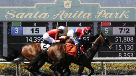 The final day of the winter-spring horse racing