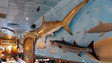 The nautical decor of The Whale's Tale in