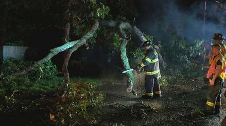 Firefighters clear trees that were knocked down by