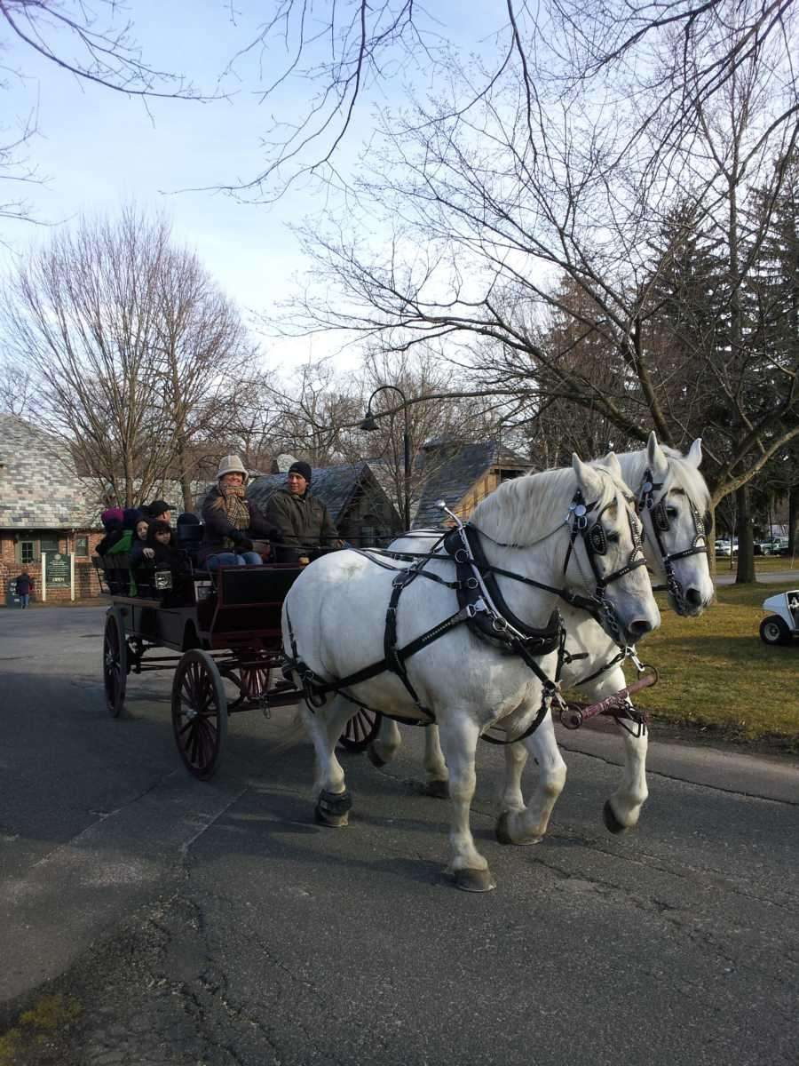 A horse-drawn carriage offers rides at the Planting