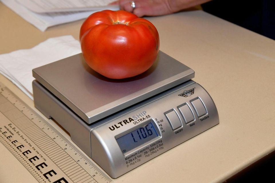 Meryl HartÕs tomato on the scale at Farmingdale